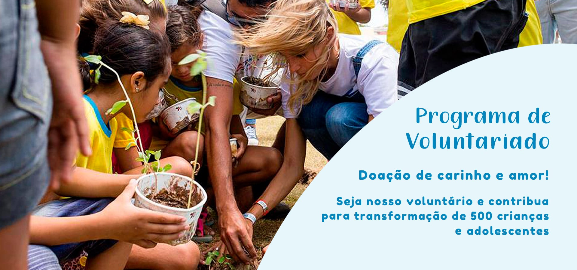 Programa Voluntariado